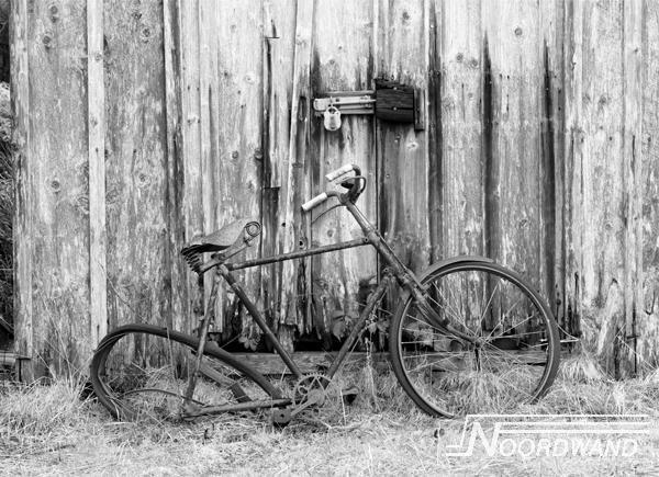 Fotobehang Noordwand Farm life 3750016 Driven