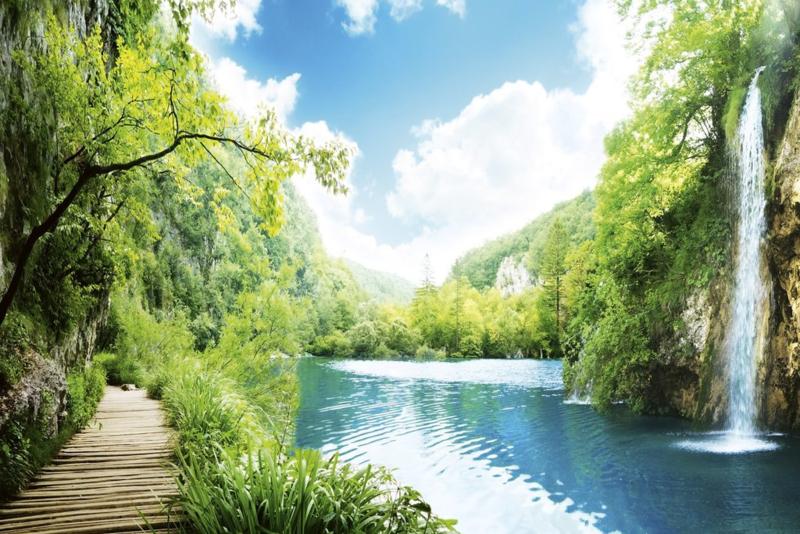 Fotobehang Waterval en Bomen