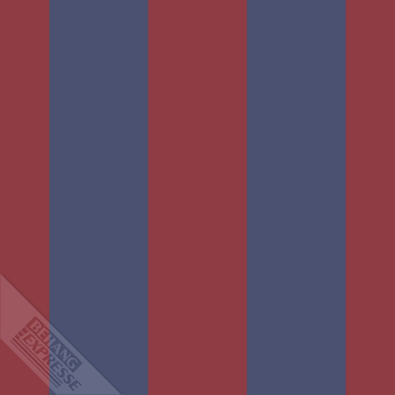 Behangexpresse Thomas - 27163 strepen