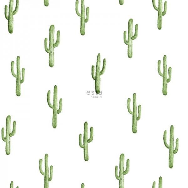 Esta Greenhouse 138899 cactus