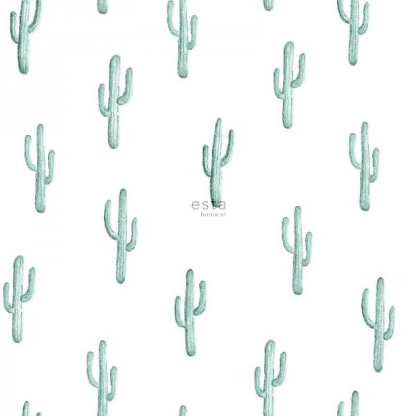 Esta Greenhouse 138898 cactus