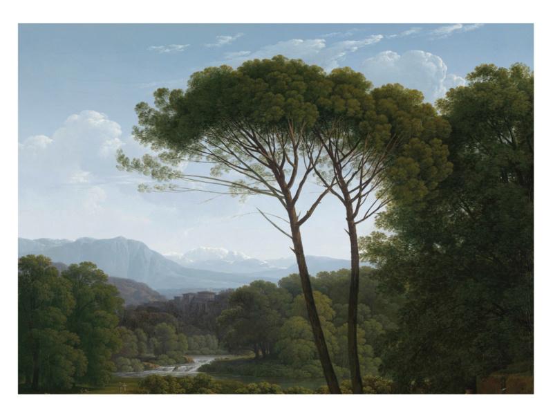 Kek Wonderwalls Golden Landscapes  WP-389