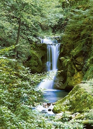 Fotobehang Idealdecor 00364 Waterfall in Spring