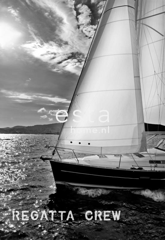 Esta Home Regatta Crew (F) 156431 PhotowallXL Sailing boat