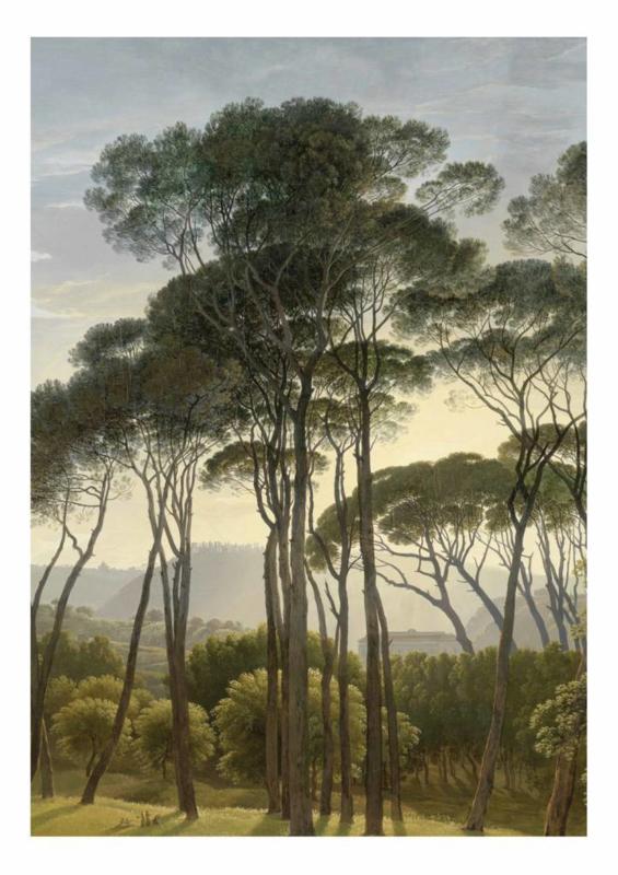 Kek Wonderwalls Golden Landscapes WP-380