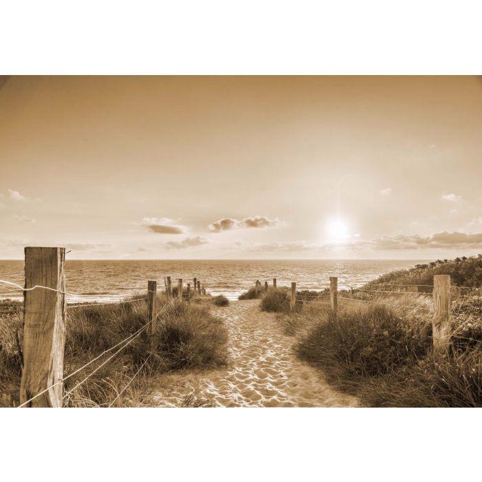 Fotobehang Zonsondergang bij het Strand Sepia