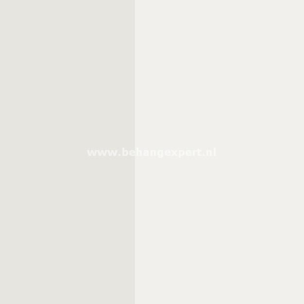 Eijffinger Stripes+ 377150
