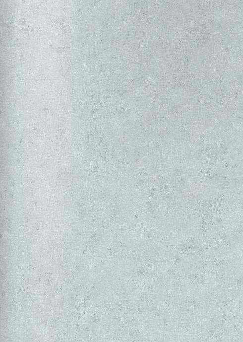 Esta Vintage Rules 138237 betonlook