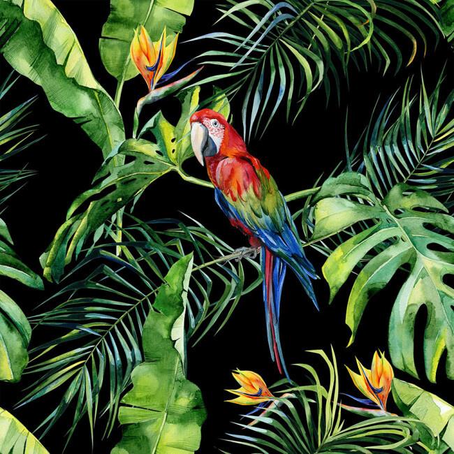 AS Creation Greenery Parrot DD116615 fotowand