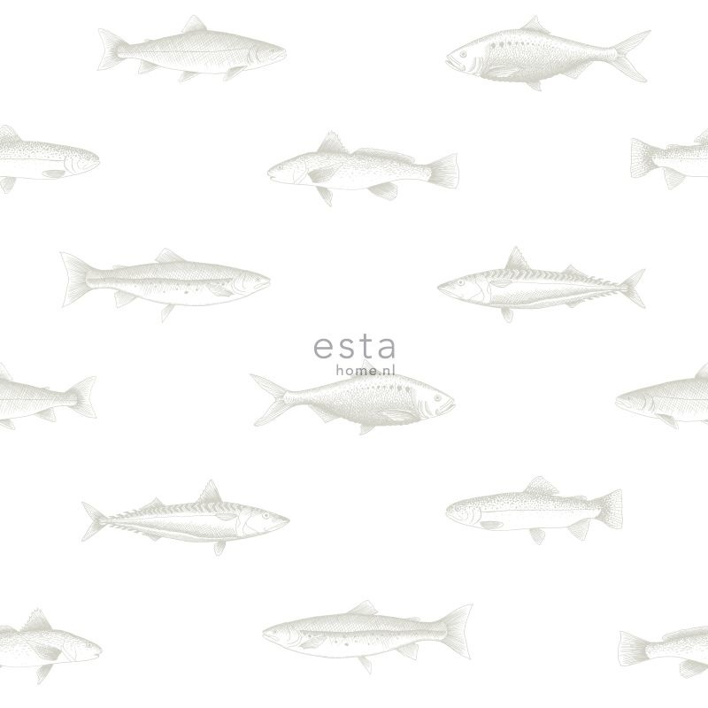 Esta - Regatta crew surf edition 138966