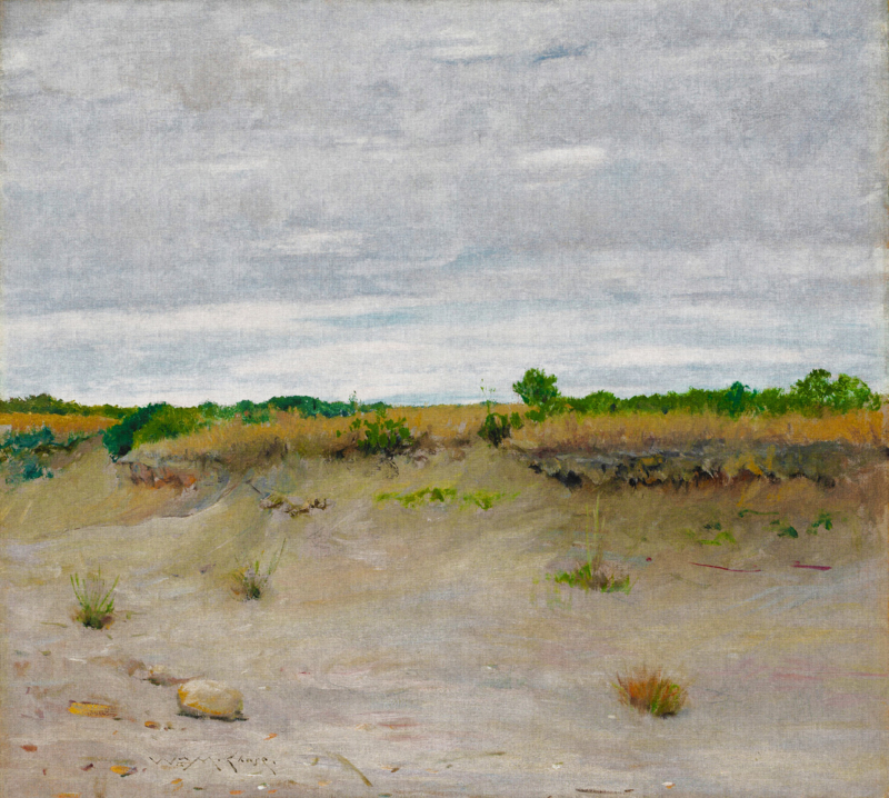 Dutch Painted Memories 8066 Wind-Swept Sands