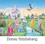Disney fotobehang