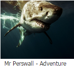 Mr perswall adventure