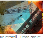 Mr perswall urban nature