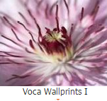 Voca wallprints 1