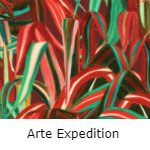 Arte Expedition