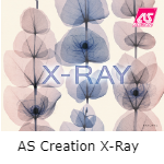 AS Creation X-Ray
