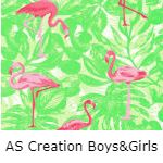 AS Creation Boys en Girls