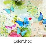 Behangexpresse Colorchoc