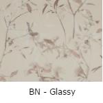 BN Glassy