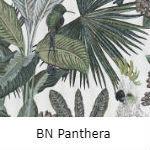 BN Panthera