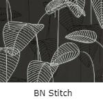BN Stitch