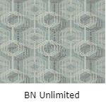 BN Unlimited