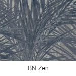 BN Zen