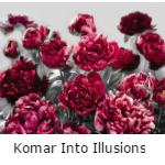 Komar Into Illusions