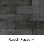 Rasch Factory