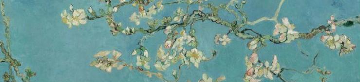 Van Gogh Amandelbloesem