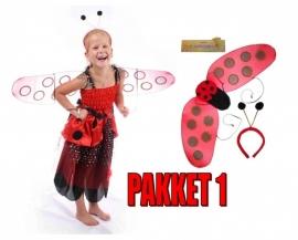 Lieveheersbeestje jurk Pakket
