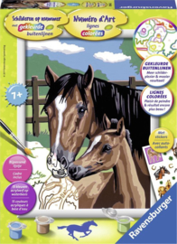 Paard schilderen op nummer - moeder en veulen