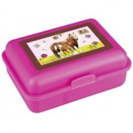 Paarden Vrienden Lunchbox