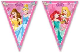 Prinsessen Vlaggenlijn Feestslinger