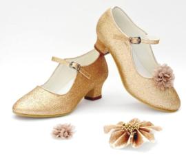 Prinsessen Schoenen Goud Glitter + kadootje