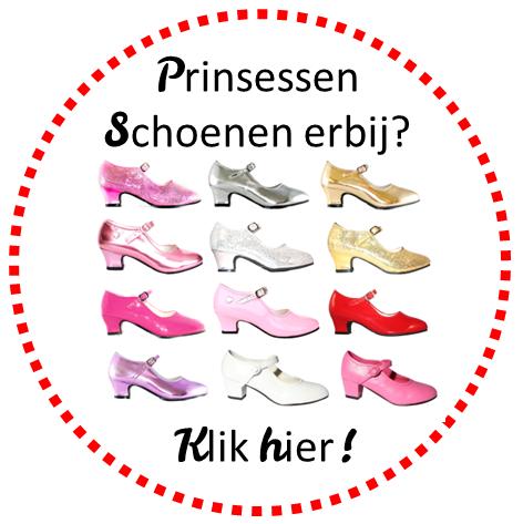 Prinsessen Schoenen erbij.png