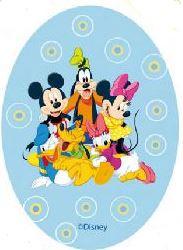 Mickey & Minnie Mouse and friends applicaties opstrijkbaar