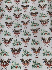 Leer kerst Rudolph