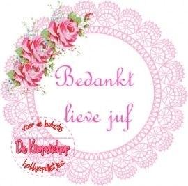 Flatback tekst bedankt lieve juf roze kantje(k968)