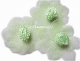 Organza bloem lime 4,5cm