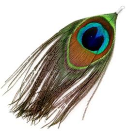 Veertjes Multicolour pauw