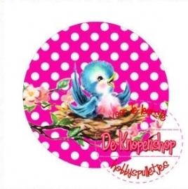 Flatback  vogeltje polkadot fuchsia (k642)