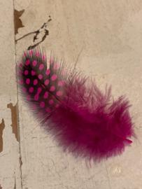 Veer  luxe hot pink/zwart 10-13cm