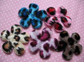 Bloemen luipaard print velvet/fluweel 3.5cm kies jou kleur