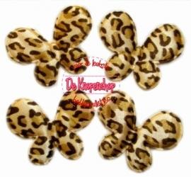 Vlinders luipaard