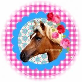 Flatback paard op fuchsia ruitje & blauw met bloemen (k063)