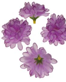 Chrysant lila 5cm