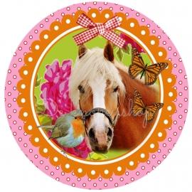 Flatback paard oranje lijst