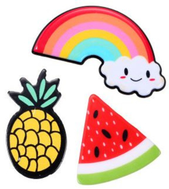 Broches/Pins rainbow-ananas-meloen